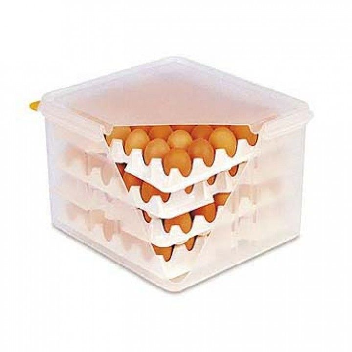 EGG BOX Box WITH 8 TRAYS 378